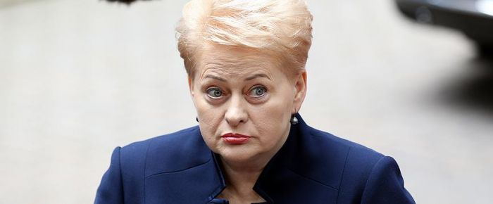 Litvanya'dan Rusya uyarısı