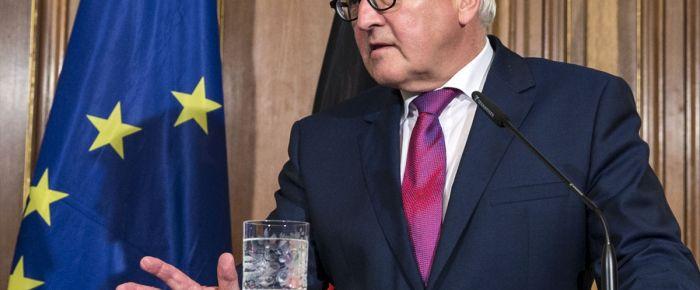 Steinmeier'den NATO'ya eleştiri