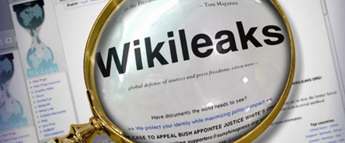 Wikileaks Almanya'yı karıştırdı